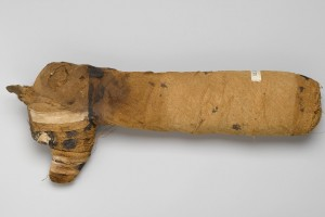 Dog_Mummy,_305_B.C.E.-395_C.E.,05.308