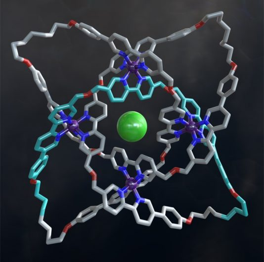 The X-ray crystal structure of a 192-atom-loop molecular 819 knot featuring iron ions (shown in purple), oxygen atoms (red), nitrogen atoms (dark blue), carbon atoms (shown in metallic grey, with one of the building blocks shown in light blue) and a single chloride ion (green) at the center of the structure. Robert W. McGregor.