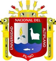 Universidad Nacional del Altiplano, Puno