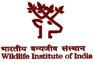 Image result for wildlife institute of <a class='inner-topic-link' href='/search/topic?searchType=search&searchTerm=INDIA' target='_blank' title='india-గురించి లేటెస్ట్ అప్డేట్స్, ఫోటోలు, వీడియోల కొరకు వెంటనే క్లిక్ చేయండి. '></div>india</a> logo