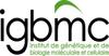 Institut de Génétique et de Biologie Moléculaire et Cellulaire