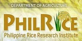 Philippine Rice Research Institute