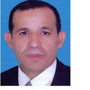 El-Sayed Mahmoud El-Rabaie
