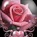 Mahesh Reddy