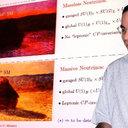 Andre de Gouvea