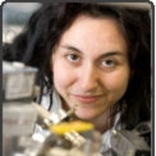 Maria Teresa Baeza-Romero | Ph D Chemistry | University of