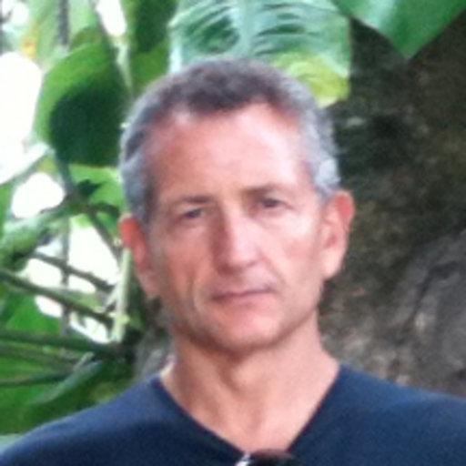 Elvio Carlino Dr Italian National Research Council