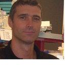 David Tulasne