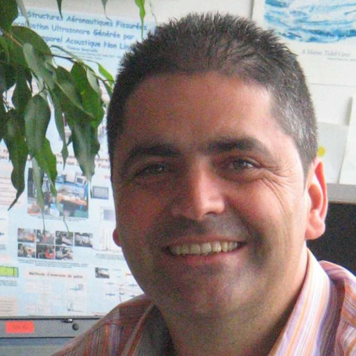 Serge Dos Santos Phd Hab Dir Rech Institut