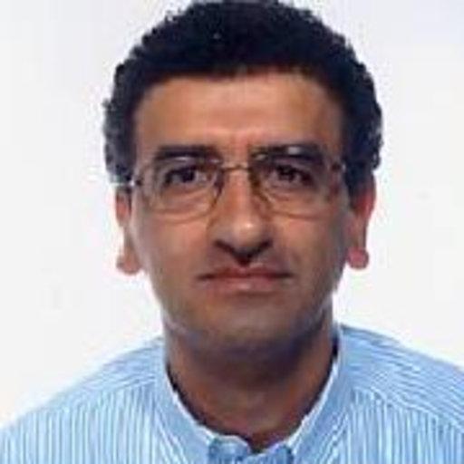b60f2d3212db Nasser Abu Zeid