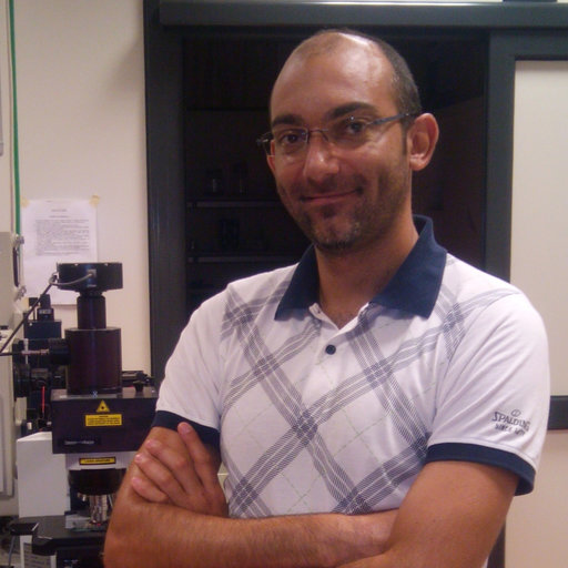 Marco Giarola | PhD in Physics | University of Verona, Verona
