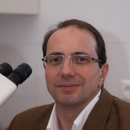 buy popular low price popular brand Gábor Méhes | MD, PhD | University of Debrecen, Debrecen ...