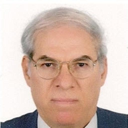 Ahmed M Abdel Khalek