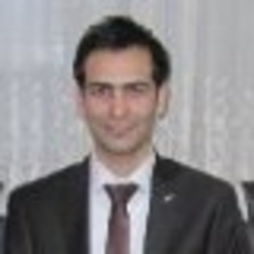 Mehdi Sanjari Doctor Of Philosophy Mcgill University