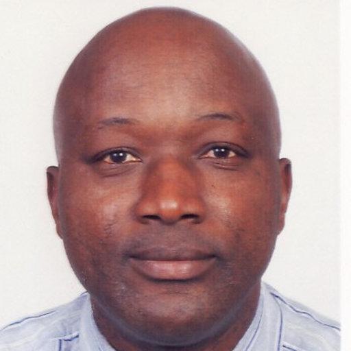 C.N. Mpinga | BSc Eng Metallurgy, Mtech Chem Eng, MSc Extr ...
