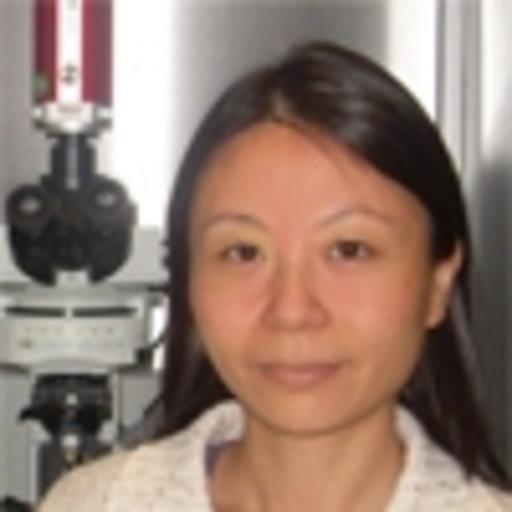 shi-zheng-li | Factcheck.kz