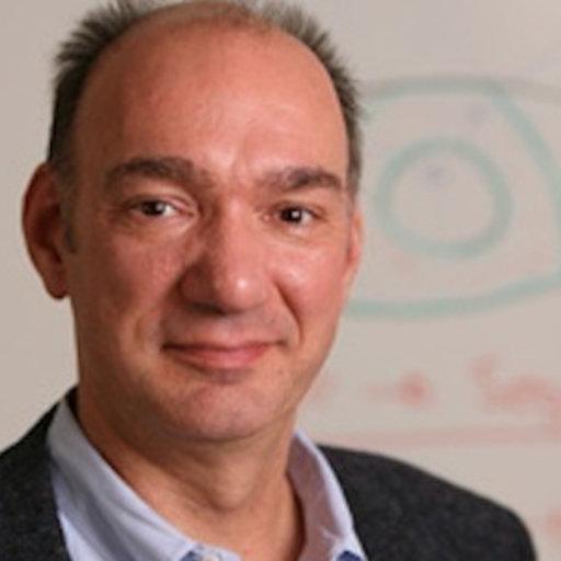 Emanuel kulczycki google scholar