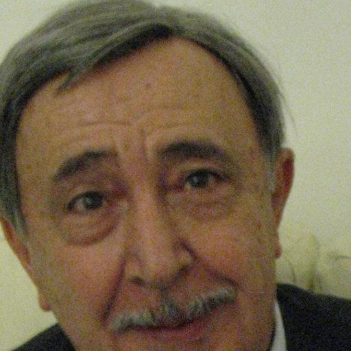 francesco mainardi physics university of bologna