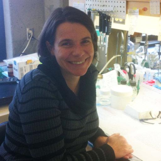 Author Genevieve Ballard >> Genevieve Morrow Phd Molecular And Cellular Biology Laval