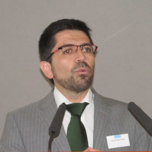 Rolando Biere Arenas Architect M Sc Urban Management And