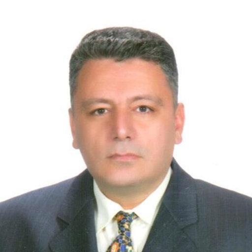 Aytunç Erek   42 publications   Dokuz Eylul University