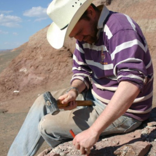 denver w fowler on expertise science education geology