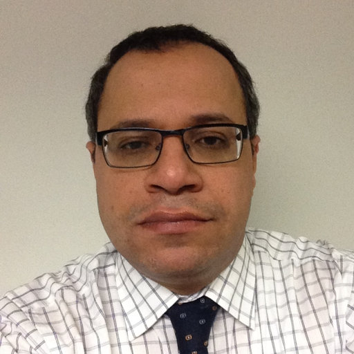 Emad Gad | Swinburne University of Technology, Melbourne | Department of Civil and Construction ...