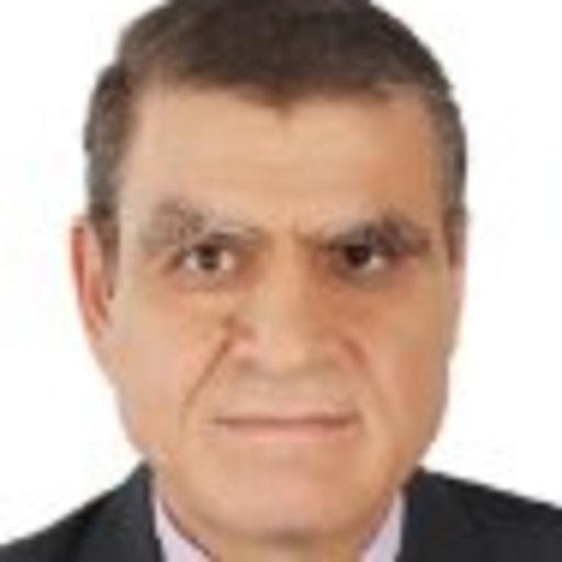 Abdel Alim Hashem El Sayed