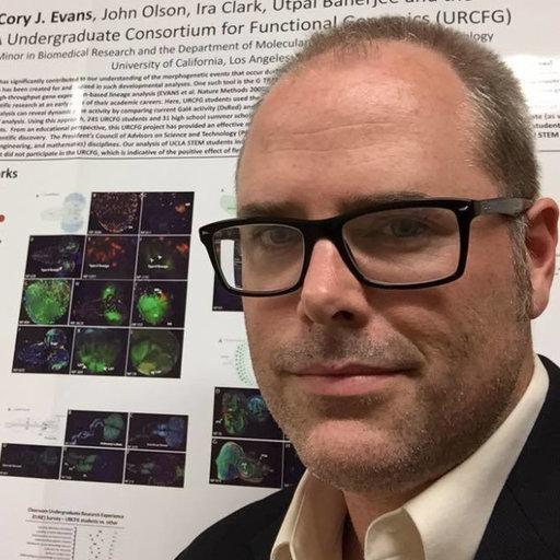 Cory J  Evans | PhD | University of California, Los Angeles