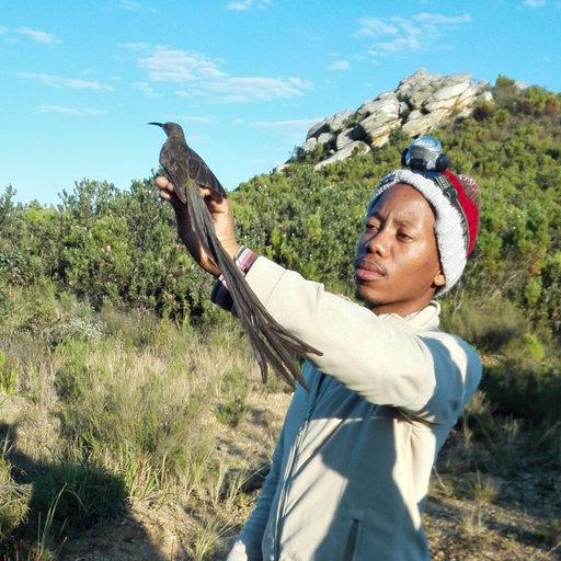 Mokgatla jerry molepo bsc botany zoology bsc hons - Nelson mandela university port elizabeth ...