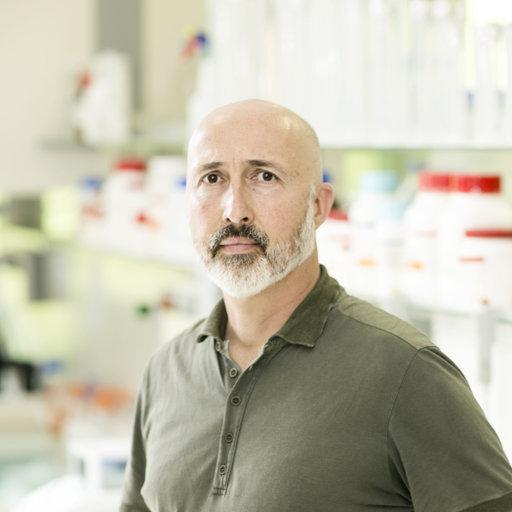 Felix Elortza | Ph  D  | Proteomics Platform