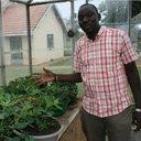David Okello Kalule