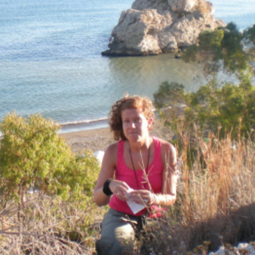 Irene Villa-Machío | PhD | Spanish National Research Council ...