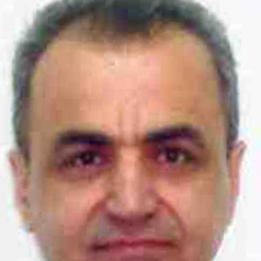 Khaled Jadallah   20 publications   King Abdullah University