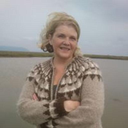 Erna Haraldsdottir Phdphphd Nursing